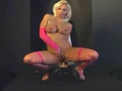 pussy_363577