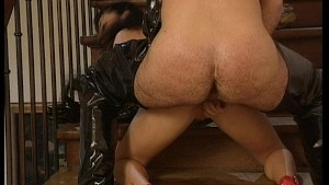 Pounded in the ass on the stairs - DBM Video