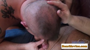 Mature chubbybear cocksucked and fucked