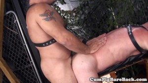 Tattooed mature bear barebacked after bj